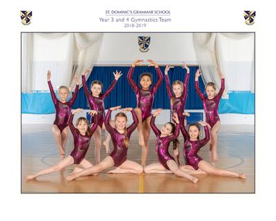 Gymnastics teams